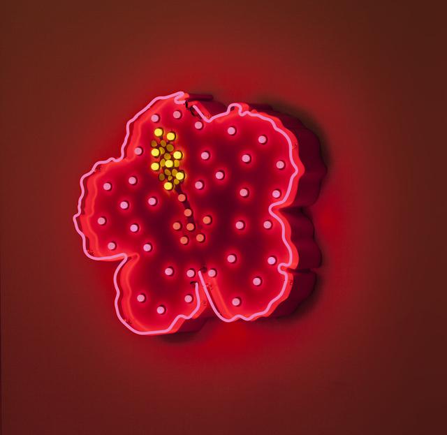 , 'Karkadé, Efflorescence ,' 2013, Jhaveri Contemporary