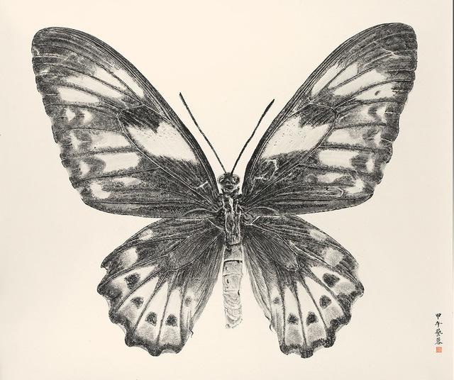 , 'Butterfly2014-8,' 2014, Alisan Fine Arts