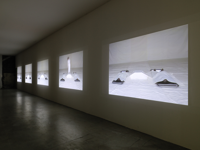 , 'Conservation I-III,' 2005, Palais de Tokyo