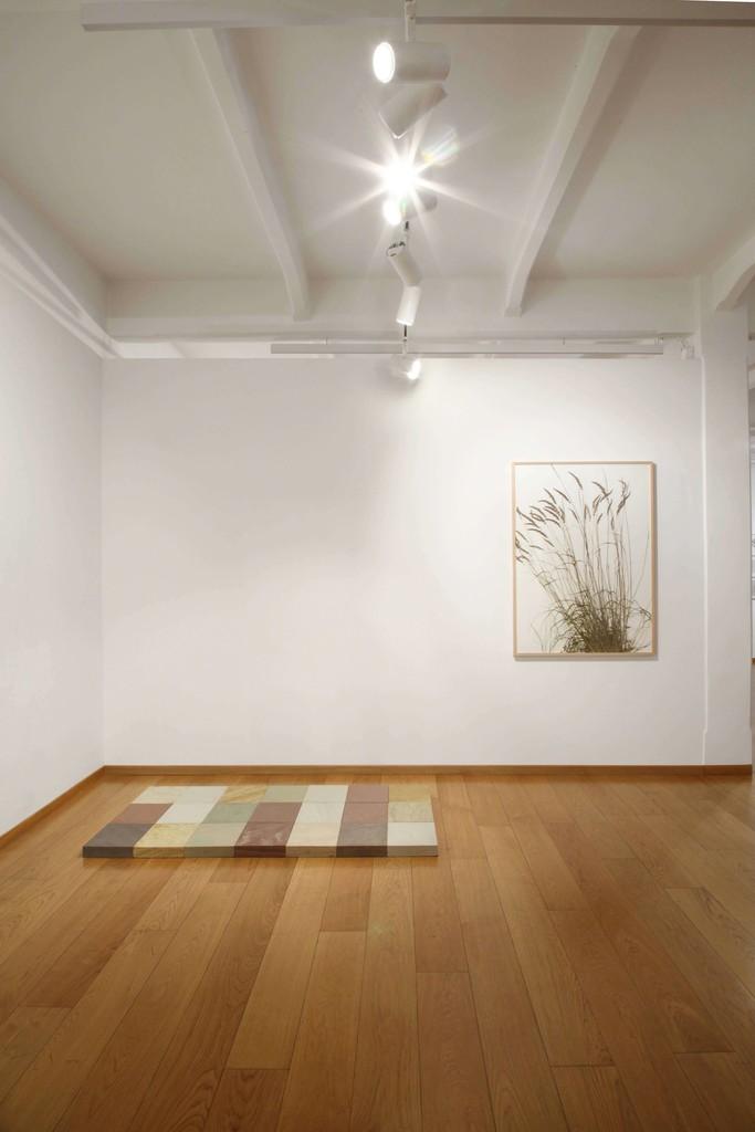 Photo by Bruno Bani Courtesy Cortesi Gallery London, Milano, Lugano