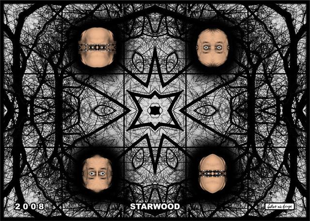 , 'starwood,' 2008, Alfonso Artiaco