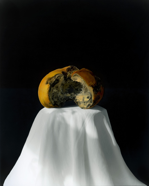 , 'Pumpkin 2008 (2-2) [南瓜 2008 (2-2)],' 2008, Shanghai Gallery of Art