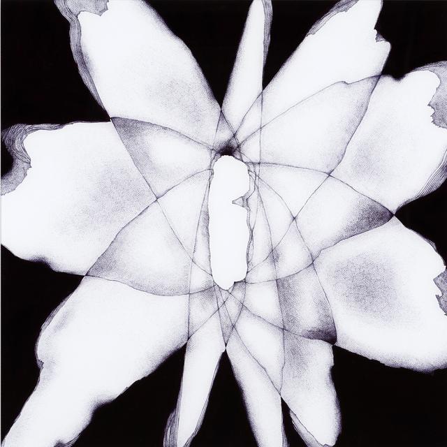 , 'Following the Shadow, Kamuikotan Metamorphic belt,' 2015, Art Front Gallery