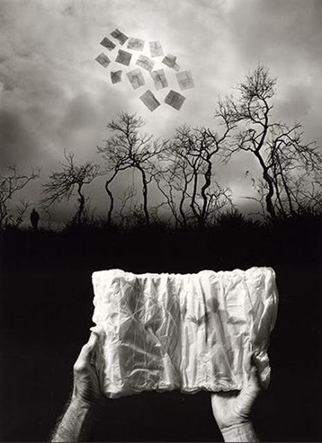 , 'Elusive Journal,' 2009, Sylvia White Gallery