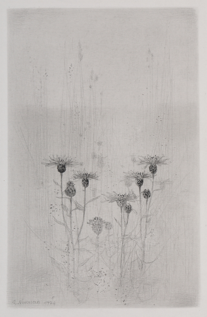 , 'Blaklint (Cornflower),' , Pucker Gallery