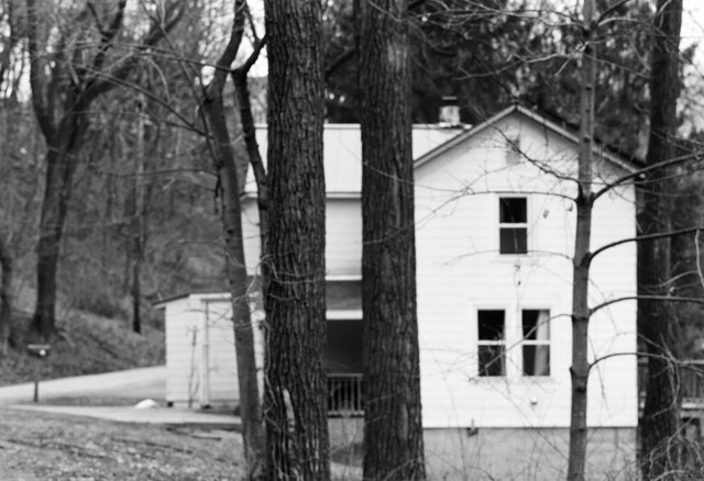 , 'Two Tress Before House,' 2012, Galerie Anne-Sarah Bénichou
