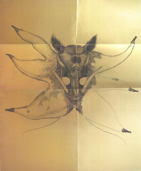 , 'Wild boar mask,' 2018, LWM18