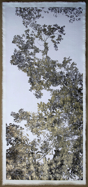 Bill Claps, 'Jungle Canopy VI', 2018, Laurent Marthaler Contemporary