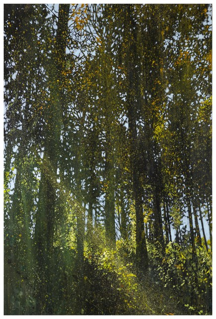 , 'Lights in the Forest-1,' 2016, Liang Gallery