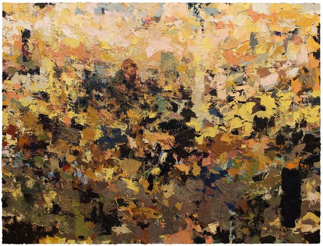 Joshua Meyer, 'Many Distances', 2017, Lyons Wier Gallery