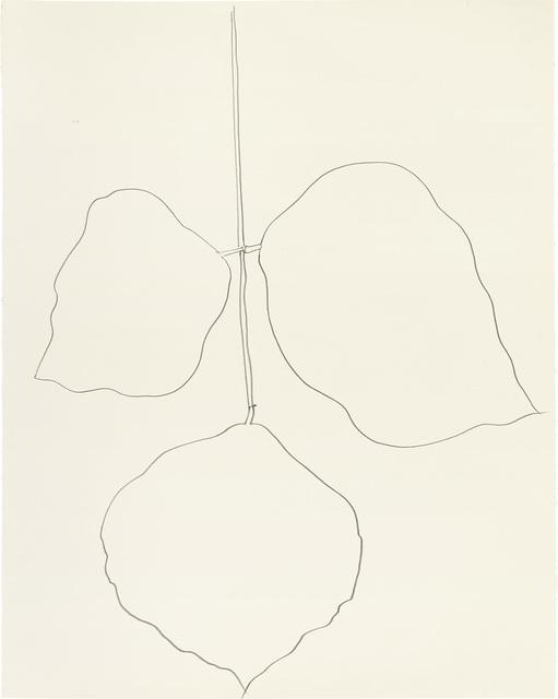 Ellsworth Kelly, 'Coral Leaf (1)', 1987, Phillips