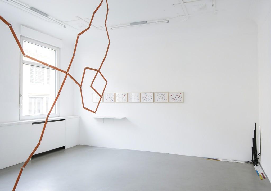 Exhibition view: FERNANDO CARABAJAL »TINTENFISCH (DISKURS OHNE WORTE)«, 2016