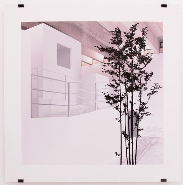 , 'Naturaleza ausente 2,' 2015, Galería Weber-Lutgen
