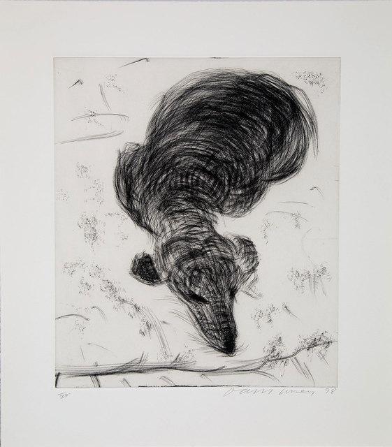 David Hockney, 'Dog Etching No. 14 from Dog Wall', 1998, Galerie Maximillian