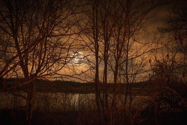 , 'Untitled (#11599- 5811),' 2014, Alex Daniels - Reflex Amsterdam