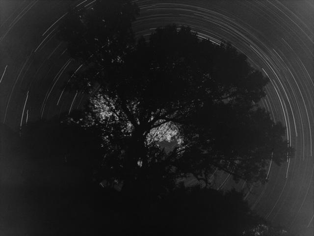 , 'sms2008159,' 2008, Gallery BK