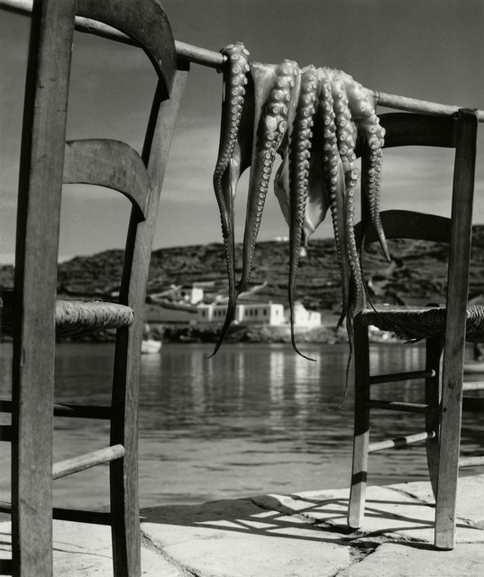 , 'Octopus. Corfu, Greece,' 1938, Magnum Photos