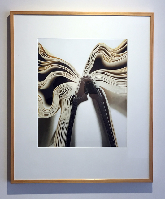 , 'Book 35, Framed,' 2009, Duane Reed Gallery