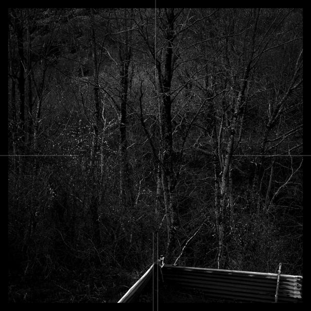 , 'Dusky Garden 010,' 2016, Zilberman Gallery