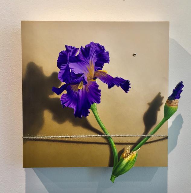 Otto Duecker, 'Nature Bound #4', 2019, M.A. Doran Gallery