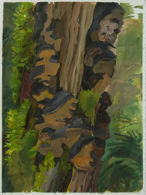 , 'Snag with Bracket Fungi,' 2015, Inman Gallery