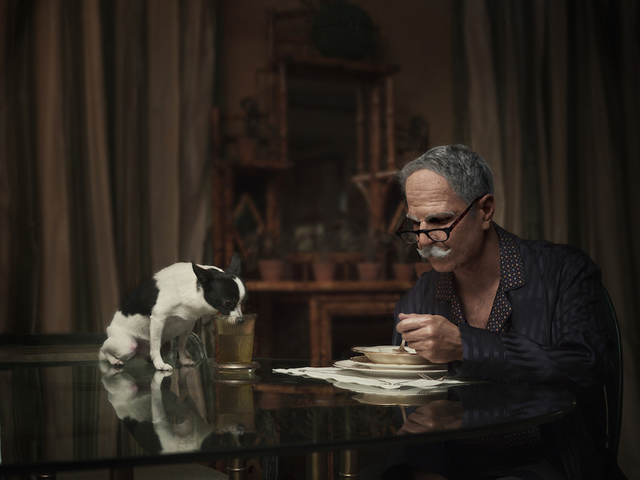 ", '""Dogs Dinner"" from the series, Maybe,' 2014, East Wing"