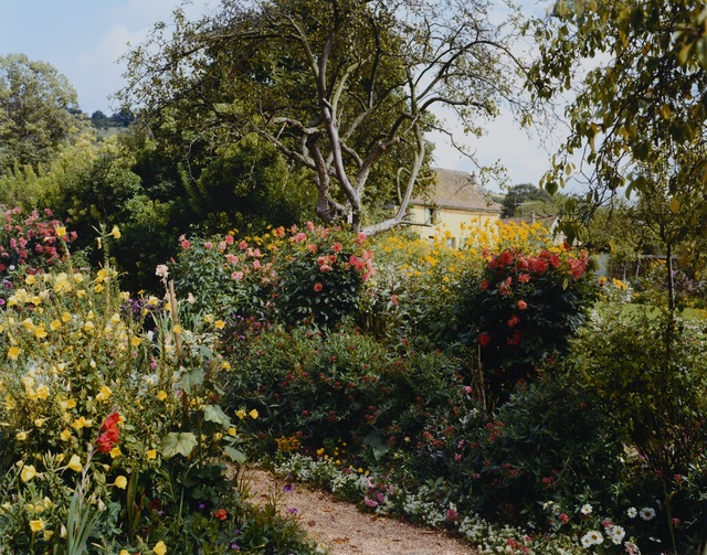 Stephen Shore, 'Red Chrysanthamums by path', 2002, Chelsea Art Group