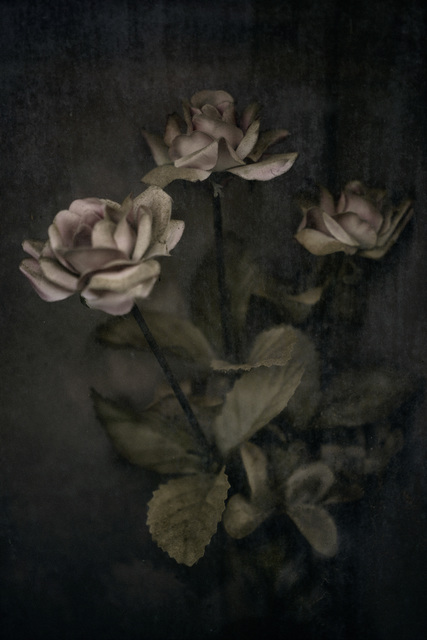 Christopher Thomas, 'Eternity 001', 2005, Ira Stehmann Fine Art Photography