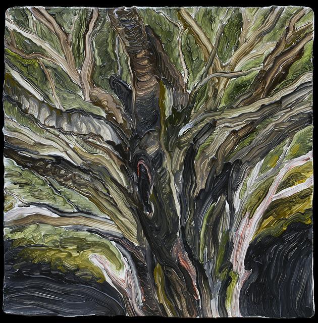 , 'Banyan tree,' 2017, galerie nichido / nca | nichido contemporary art
