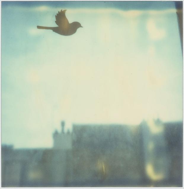 , 'Toujours - Contemporary, Conceptual, Women, Polaroid, 21st Century, Cityscape, Bird,' 2009, Instantdreams