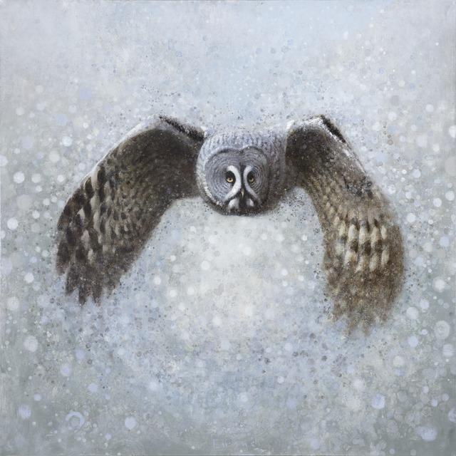 , 'Lapland Owl IV,' , Stremmel Gallery