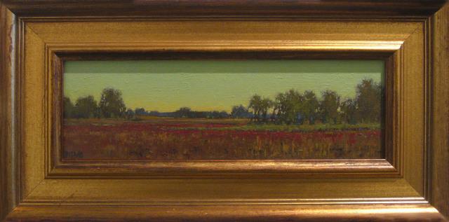 , 'Nantucket Cranberry Bog,' 2012, BoxHeart