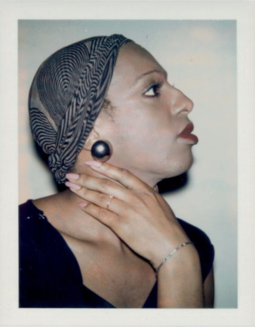 Andy Warhol, 'Ladies and Gentlemen (Wilhelmina Ross)', 1975, Photography, Unique Polaroid print, Hedges Projects