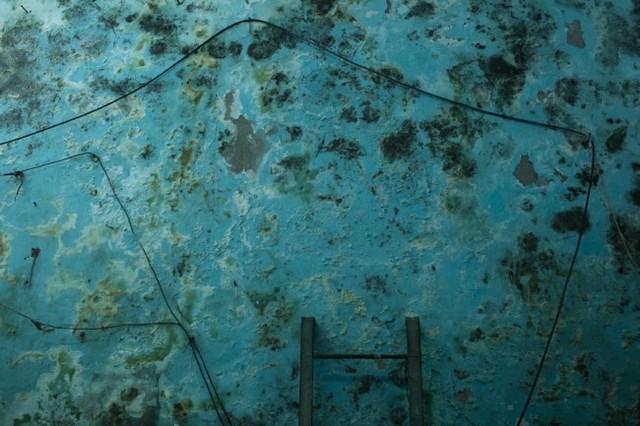, 'La Vida Oculta #16,' 2010, ILEX Gallery