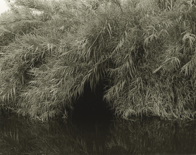 Mark Ruwedel, 'LA River/Glendale Narrows #18', 2015, Photography, Gelatin silver print dry-mounted to archival board, Gallery Luisotti