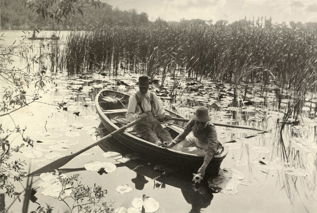 Peter Henry Emerson. Gathering Water Lilies, 1885, Platinum print. 7 7/8 x 11 3/8 inches. Collection of Michael Mattis and Judy Hochberg.