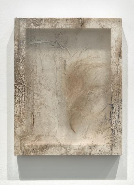 , 'Remnant (Polar Bear Fur),' 2016, Minus Space