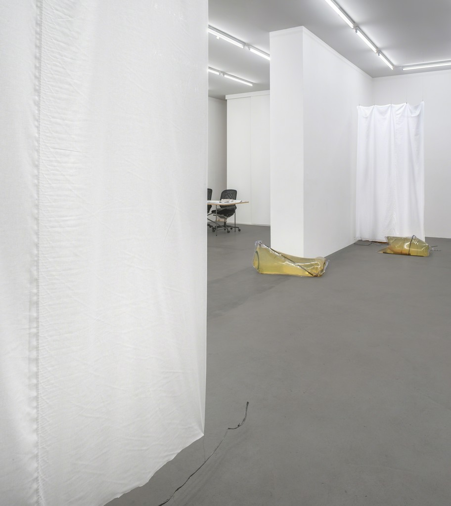 Installation view, Cannibals, 2015, Photocredit Joachim Schulz, Courtesy Croy Nielsen