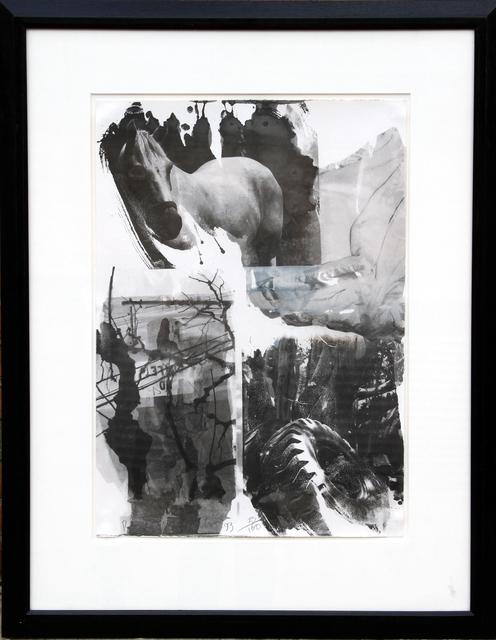 Robert Rauschenberg, 'Horse Silk from the Night Sights Series', 1993, Print, Screenprint and Offset Lithograph, RoGallery