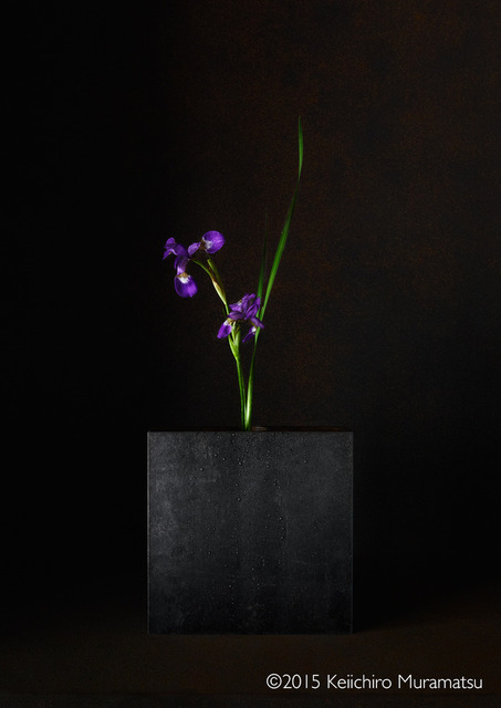 , 'A Stage Iris 4-2,' 2015, Galerie Marie-Robin