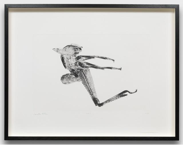 Carsten Höller, 'Puppen', 2013, Gagosian