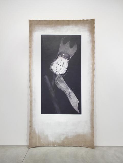 , 'Art Forms in Mechanism XXIII,' 2016, Inman Gallery