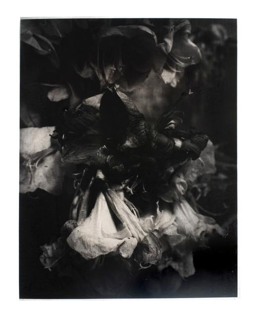 , 'La Passion #3,' 2012, Galerie Laurent Godin
