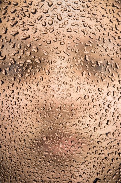 Rollin Leonard, 'Alyssa', 2015-2016, Stone + Press Gallery