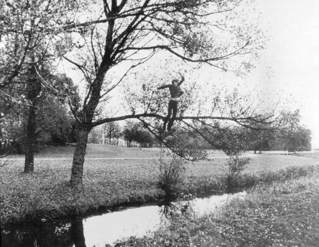 , 'Broken fall (organic), Amsterdamse Bos, Holland,' 1971, Simon Lee Gallery