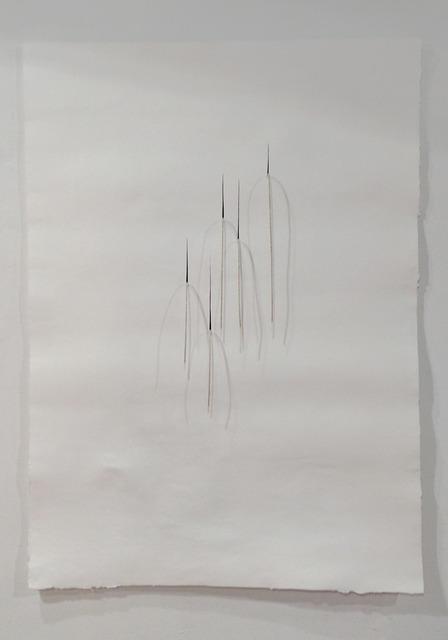 , 'Incis III,' 2012, Cánem