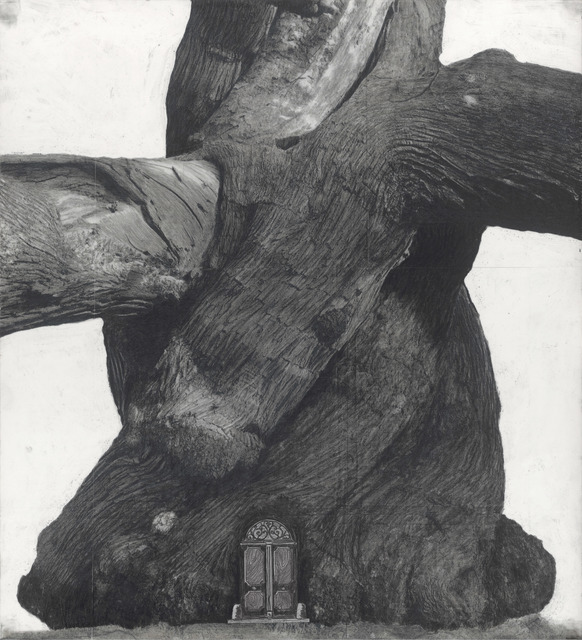 Patrick Van Caeckenbergh, 'Drawing of Old Trees during wintry days 2007-2014', 2007-2014, Wilding Cran Gallery