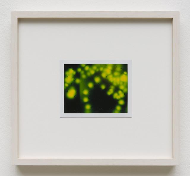 , 'Photuris #3,' 2013, Galerie Crone