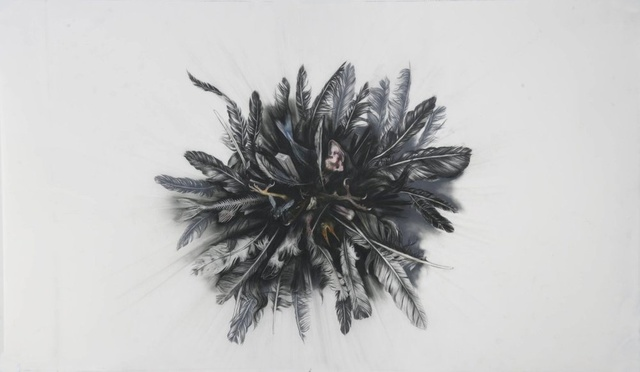 Anthony Goicolea, 'Implode with feathers', 2011, Galerie Ron Mandos