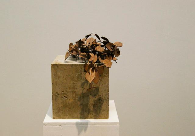 , 'Untitled,' , SGR Galería